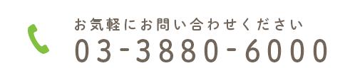 お気軽にお問い合わせください 03-3880-6000