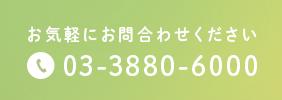 お気軽にお問合わせください 03-3880-6000